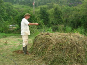 Production of organic compost